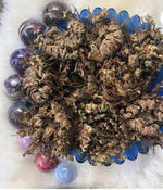Load image into Gallery viewer, Rose of Jericho Manifestation Plant