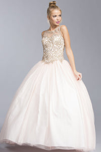 Illusion Long Ball Gown With Open Back APL1910-Long Dresses-smcfashion.com