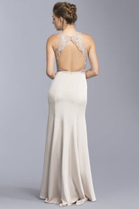 Illusion Long Formal Dresses APL1987-Evening Dresses-smcfashion.com