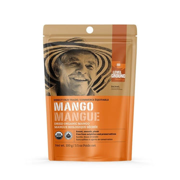 Organic Dried Mango 100g