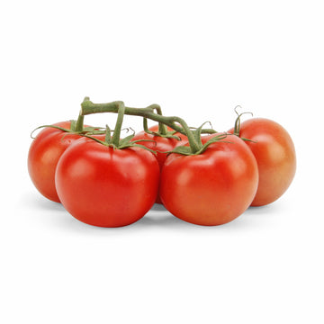 Tomatoes on a Vine ~630g