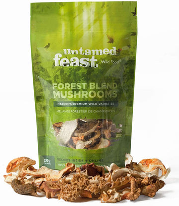 Dried Forest Blend Mushrooms 20g