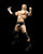 S.H. Figuarts WWE Triple H Action Figure - Toyz in the Box