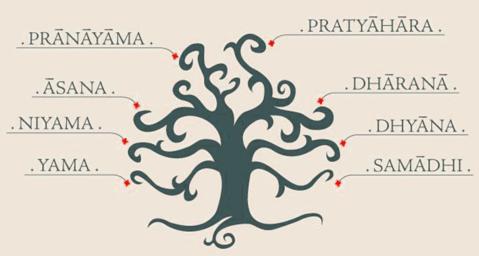 The heigh branches of yoga