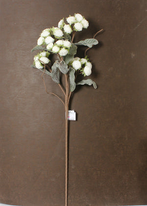 Chrysanthemum Flower Stem - White