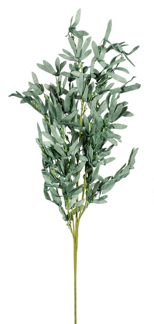 Wild Rosemary Spray - Green
