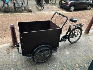 rent a cargo bike for children or goods