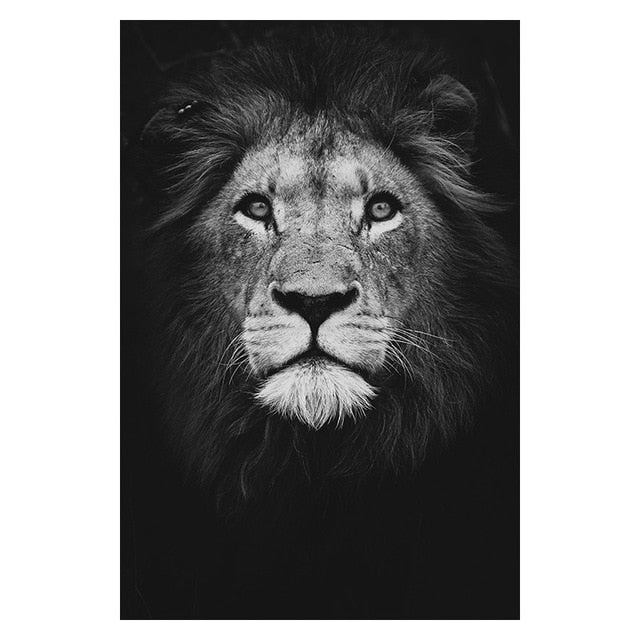 Black and White Animal Canvas painting