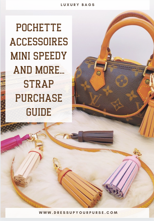 Dowload the complete guide to Dress Up your LV Pochette accessoires, Mini Speedy and more...