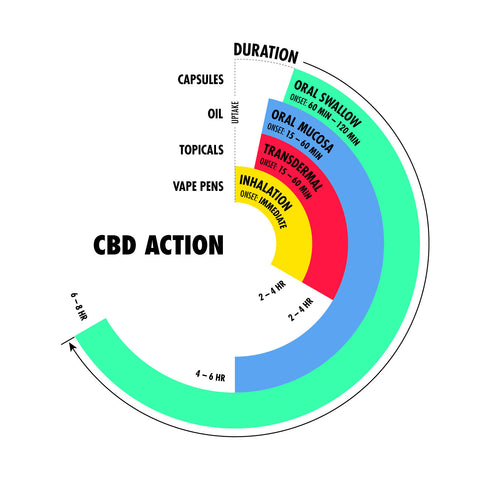Which CBD Product Is Right For Me?