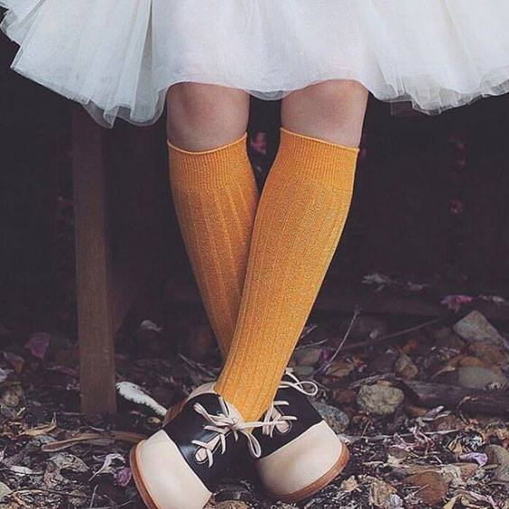 Organic cotton ribbed knee high socks