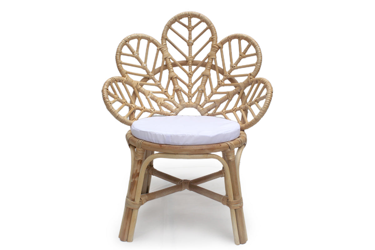 Peacook chair + Cushion