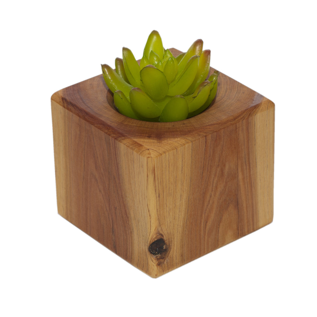 Wooden Succulent Pot