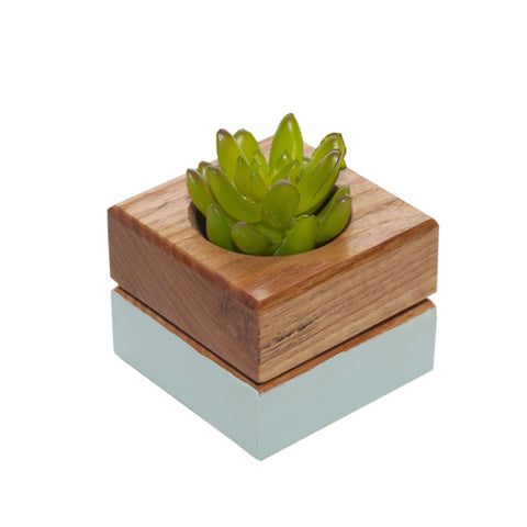 Coloured Wooden Succulent Pot
