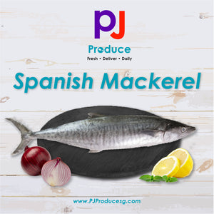 Spanish Mackerel / Batang (Whole)