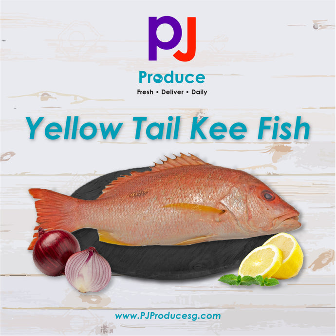 Yellow Tail Kee Fish (Whole)