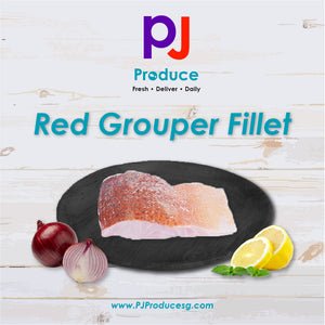 Red Grouper (Fillet)