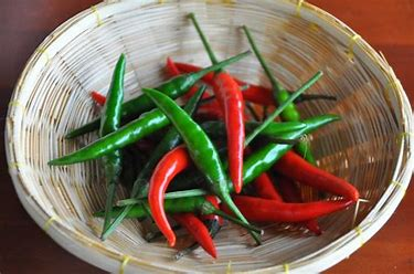 280gm Guindilla Whole Chillies Green in Vinegar