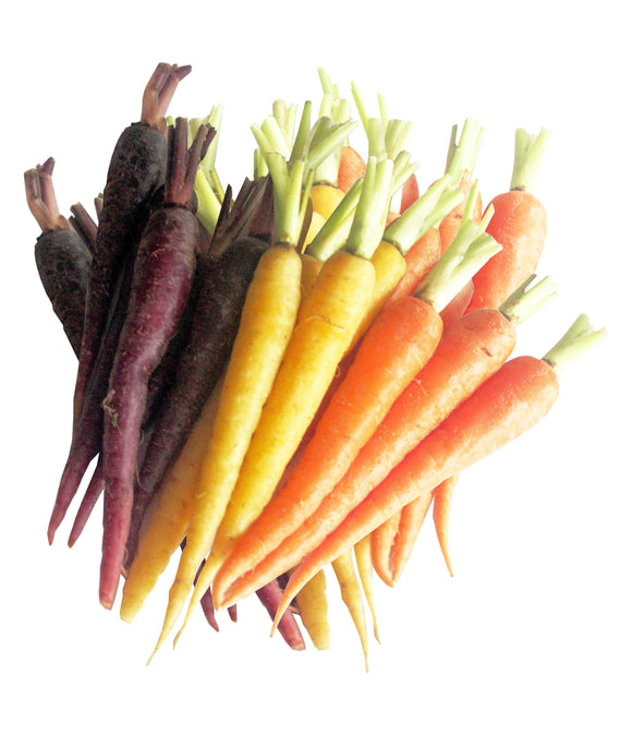 Mixed Baby Carrots Punnet 220g