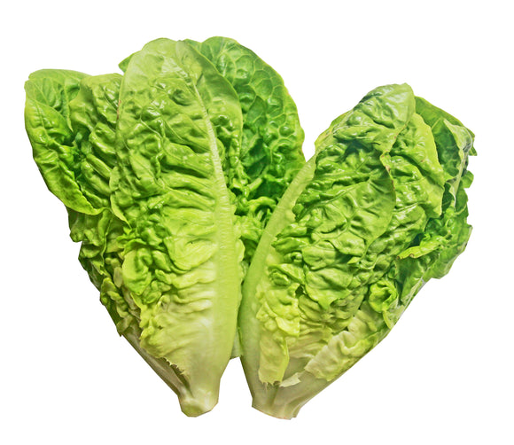 Behind the Shed Little Gem Lettuce 100g