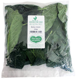 Behind the Shed Baby Kale 100g