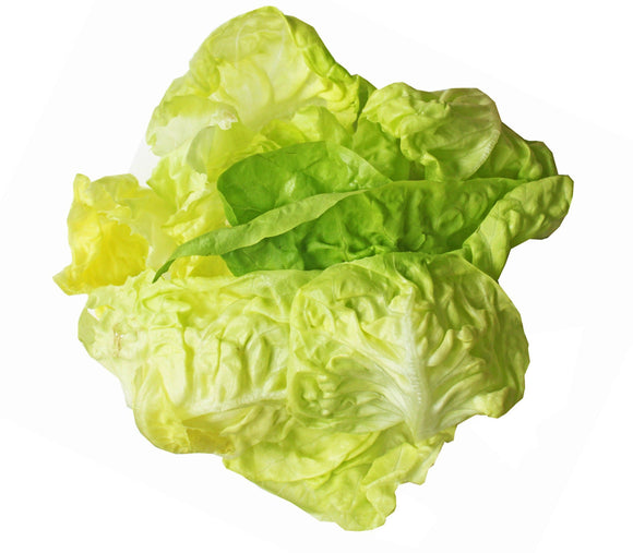 Behind the Shed Butter Lettuce 150g