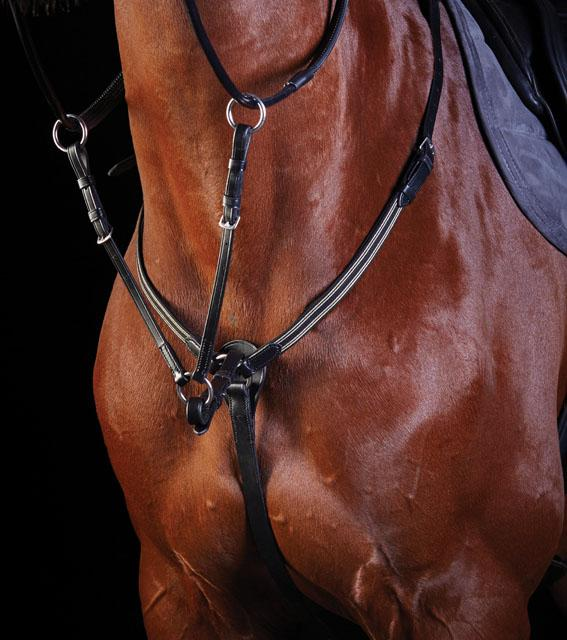 Collegiate Event Breastplate