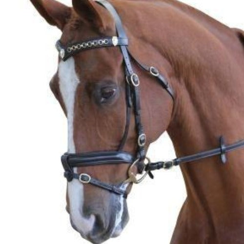 Collegiate Performance Bridle