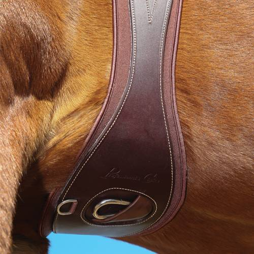 Professionals Choice Leather Ventech Girth