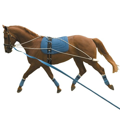 Kincade Rope Fleece Lunging System
