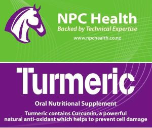 NPC Turmeric Powder
