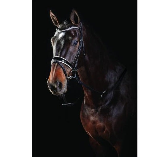 Collegiate Shaped Crystal Bridle