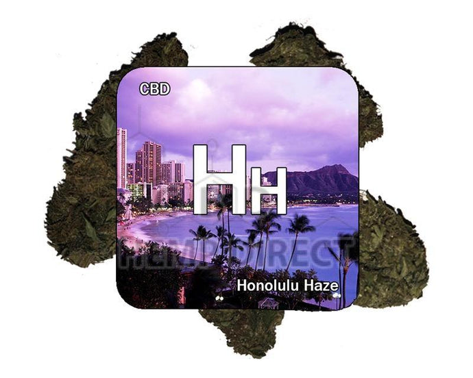 Honolulu Haze Kief Nugs