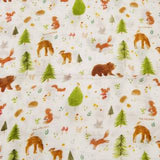 LOULOU LOLLIPOP FOREST FRIENDS SWADDLE