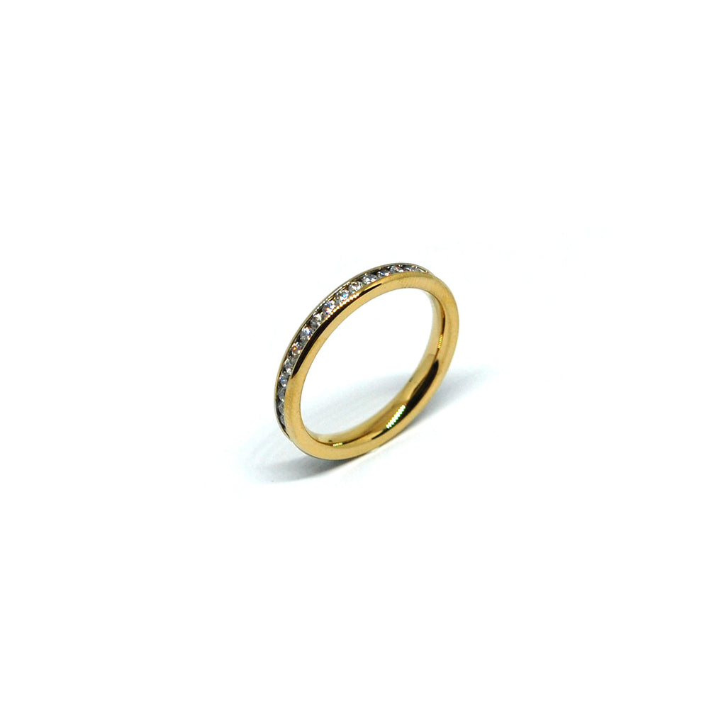 ESR 6967: Beatrice All IPG Super Thin Eternity Ring