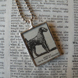 Airedale dog, vintage 1930s dictionary illustration, up-cycled to hand-soldered glass pendant