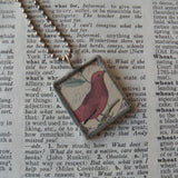 Red bird, vintage natural history illustration, up-cycled to hand-soldered glass pendant