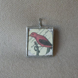 Red bird, white bird, vintage natural history illustrations, up-cycled to 2-sided, hand-soldered glass pendant