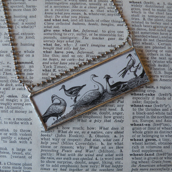 Birds, natural history, vintage illustration, up-cycled to soldered glass pendant