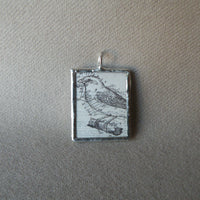 Bird and flowers, vintage scientific natural history illustrations up-cycled to soldered glass pendant