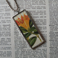 Succulent flowers, vintage botanical illustrations, hand-soldered glass pendant