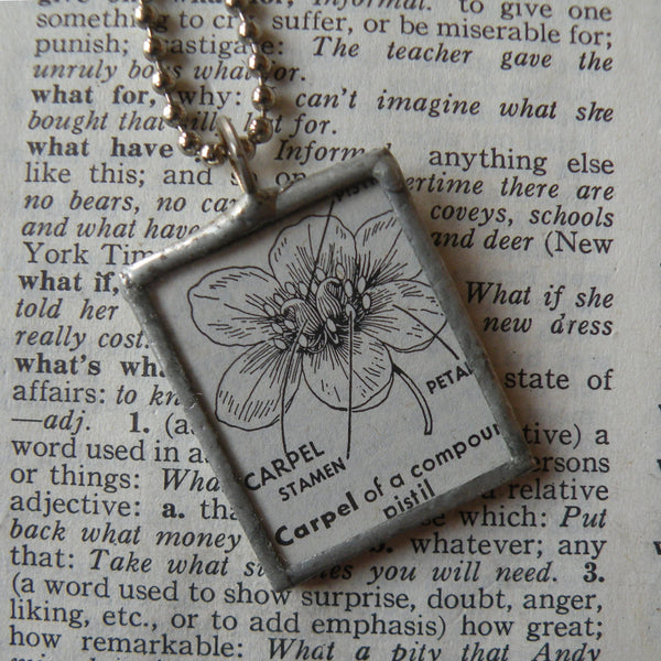 Carpel flower annotated diagram, vintage botanical dictionary illustration, upcycled to soldered glass pendant
