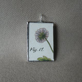 Blue cornflower, purple clover, vintage botanical illustrations, hand-soldered glass pendant