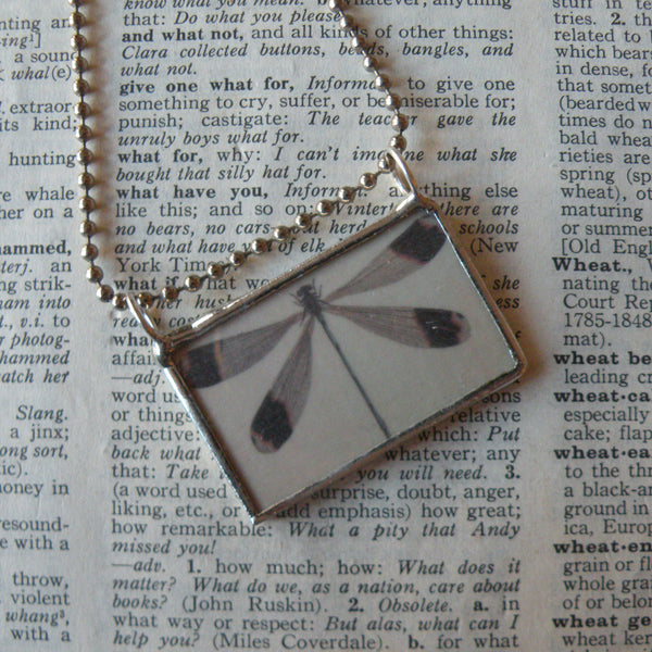 Dragonfly and butterflies, vintage illustrations, upcycled to 2-sided soldered glass pendant