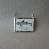 Grampus whale, vintage scientific dictionary illustration, upcycled to hand soldered glass pendant