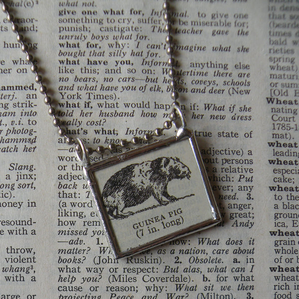 Guinea Pig, vintage 1940s dictionary illustration, up-cycled to hand-soldered glass pendant