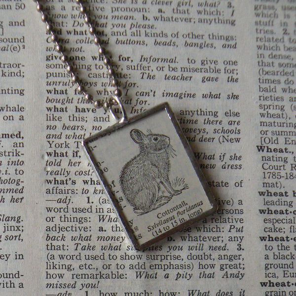 Cottontail rabbit, vintage 1930s dictionary illustration, up-cycled to hand-soldered glass pendant