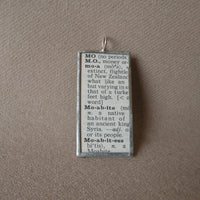 Moa, ostrich, bird, vintage 1940s dictionary illustration upcycled to soldered glass pendant