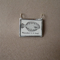 Flounder fish, vintage scientific dictionary illustration, upcycled to hand soldered glass pendant