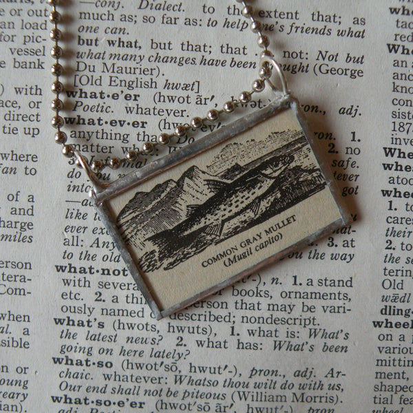 Common Gray Mullet, fish, vintage scientific dictionary illustration, upcycled to hand soldered glass pendant